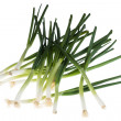 Green onions isolated on white background — Stock Photo