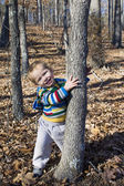 Little boy plays eighteen months in the forest — Stock Photo