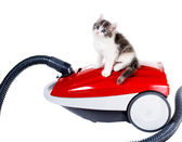 Cute fluffy kitten on a red vacuum cleaner — Stock Photo