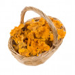 Stock Photo: Wicker basket with mushrooms