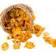 Spill out of the basket of chanterelles — Stock Photo