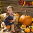 Stock Photo: Baby playing in wooden shed with with apples and pumpkins