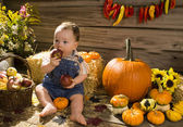 Baby playing in a wooden shed with with apples and pumpkins — Stock Photo