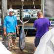 Fisher mans at the New Orleans marina — Stockfoto