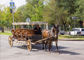 Horse carriage at the street of New Orleans — Stock Photo