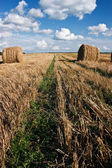 Hay roll and clouds — Stock Photo