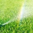 Water sprinkler and rainbow — Stock Photo