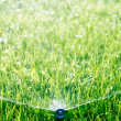 Automatic lawn sprinkler — Stock Photo