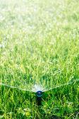 Automatické trávníku postřikovače — Stock fotografie