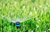 Sprinkler head — Foto Stock