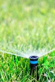 Vatten sprinkler — Stockfoto