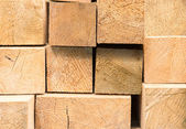 Stack of wood — Foto Stock