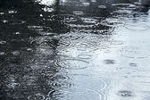 Puddle with raindrops — Stock Photo