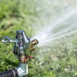 Garden lawn water sprinkler — Stock Photo #29586429