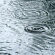 Raindrops rippling in a puddle — Stock Photo