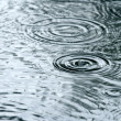 Stock Photo: Raindrops rippling in puddle