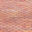 Stock Photo: Red tiles roof
