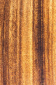 Mahogany wood texture — Stock Photo