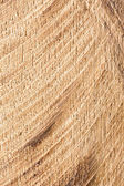 Cutted wood texture — Stock Photo