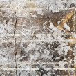 Grungy painted background — Stock Photo #33712907