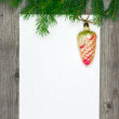 Christmas card with fir branch and vintage cone — Stock Photo