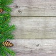 Christmas fir tree branch on rustic wooden board — ストック写真