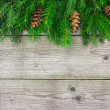 Green fir tree branch on wooden board — Stock Photo
