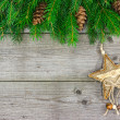 Fir branch with decorative star — Stock Photo