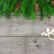 Fir branch with angel — Stock Photo