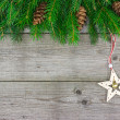 Fir tree branch with Christmas star — Stock Photo #34981225