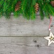 Fir tree branch with Christmas star — Stock Photo