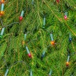 Christmas lights on a spruce — Stock Photo