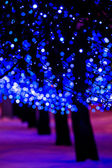 Bright blue holiday lights — Stock Photo