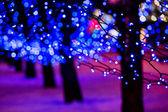 带灯的街 — 图库照片
