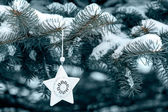 Snow covered fir tree and star — Stockfoto