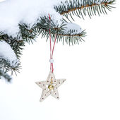 Christmas fir tree with star — Stock Photo