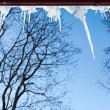 Icicles hanging from a roof — Stock Photo
