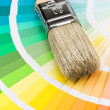 Color samples and brush — Stock Photo