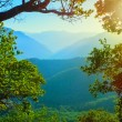 Landscape in the mountains — Stock Photo