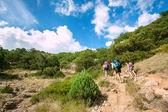Mountain hikers — Stock Photo