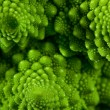 Romanesco broccoli cabbage marco — Stock Photo