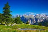 Landschap van de dolomieten — Stockfoto
