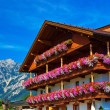 Alps traditional house — Foto de Stock