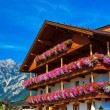 Alps traditional house — Stock Photo #23657145