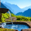 Water spring — Stock Photo