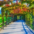 Beautiful walkway — Stock Photo
