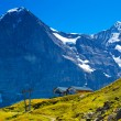 Alps mountains - Stock Photo