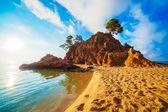 Island at sunrise — Stock Photo