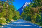 Automobile road — Stock Photo