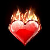 Burning Love — Stock Vector